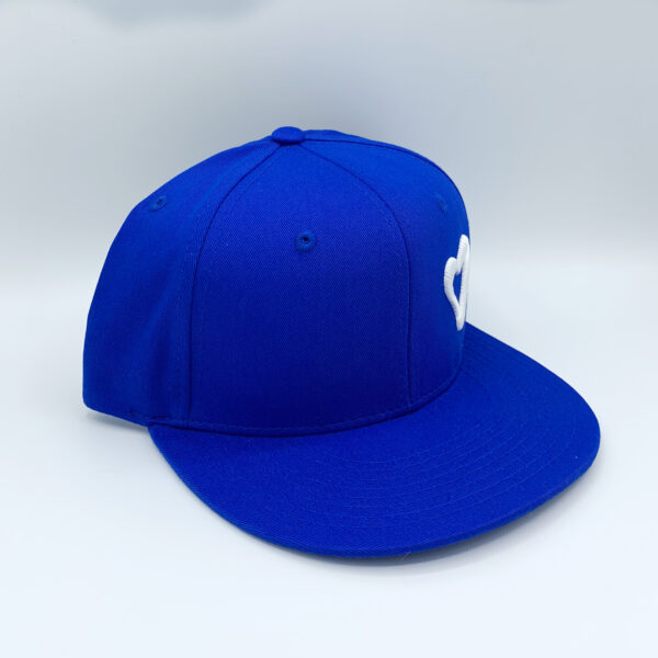 Energize The World Snapback - Royal & White