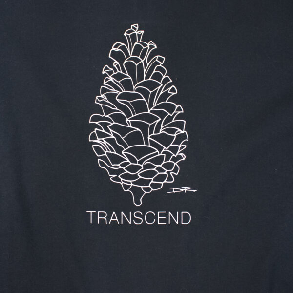 TRANSCEND & SHINE   I AM Women's Hoodie