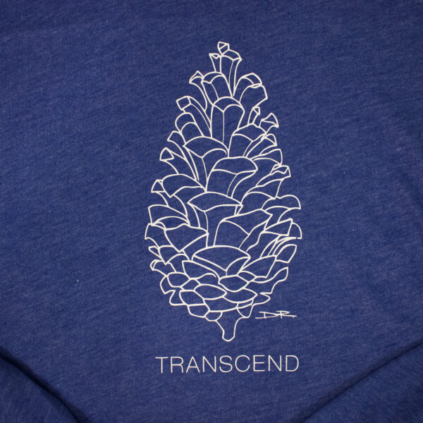 TRANSCEND & SHINE | I AM Men's Tee